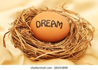 Nest egg dream