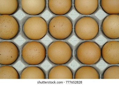 nest egg on white Texture Background.Has space for text.Has space for text.Suitable for many applications. Good image