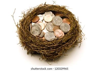 Nest Full of Money for Savings