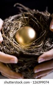 Nest with golden egg