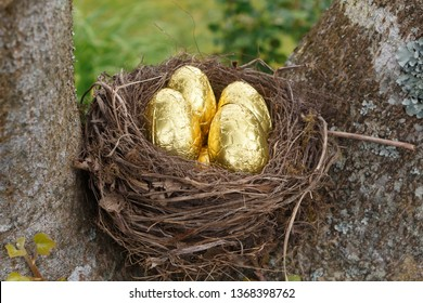 Nest with milk chocolate eggs wrapped in golden paper for Easter