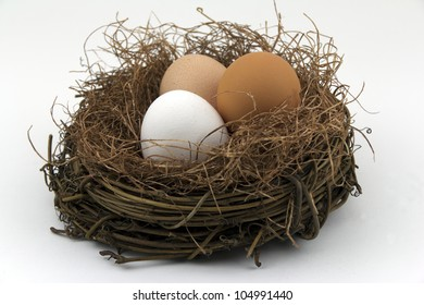 A nest of three different kinds of eggs against white background,