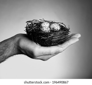 A nest with three eggs sitting in someone's hand.