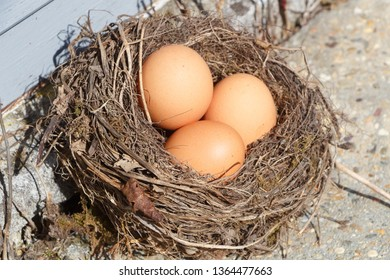 Nest with three hen eggs for Easter