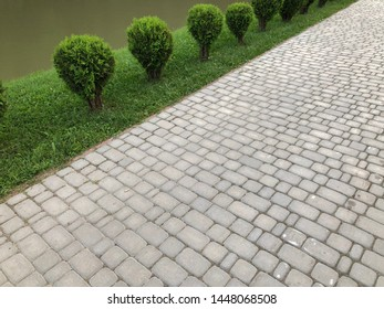 Nested pavers of various colors, around the grass, chic garden