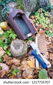 Nesting box, nest (blue tit) and tools for nesting box cleaning on forest floor