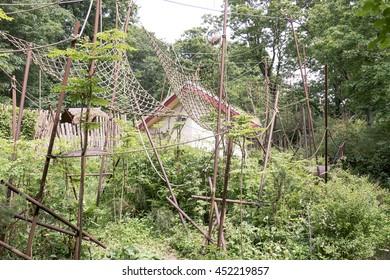 NETHERLANDS - APELDOORN - CIRCA JUNE 2016: Monkeys's yard in The Apenheul in Apeldoorn, Netherlands.