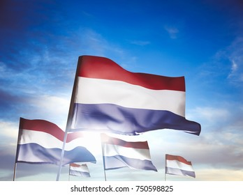 Netherlands flags waving with pride on a sunny day / high contrast image