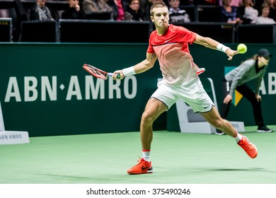 NETHERLANDS, ROTTERDAM - February 10th 2016: at the Sportpaleis Ahoy during the ATP World Tour indoor tennis tournament ABN AMRO WTT , Borna Coric