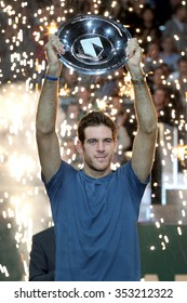 NETHERLANDS, ROTTERDAM - Febuari 17th 2013: at the Sportpaleis Ahoy During the world cup fieldhockey / hockey , Juan Martin del Potro wins the 40th ABN-AMRO ATP World Tennis Tournament