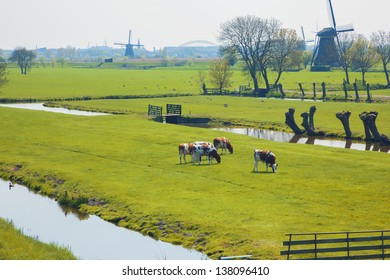 Netherlands typical spring view