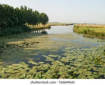 Netherlands, waterland, Landscape Nijkerk, Gelderland, Holland, NLD