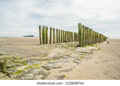 In Netherlands at Zoutelande, there are wooden poles in the sea