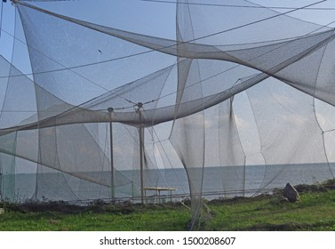 Nets in birds ringing station in Vente cape, Lithuania. Ventė Cape is a headland in Nemunas Delta, located in Šilutė district, Lithuania. It is known as a rest place for many birds during migration.