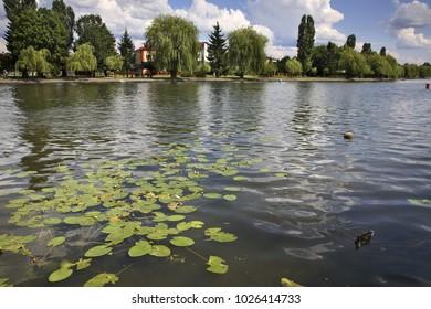Netta river in Augustow. Poland
