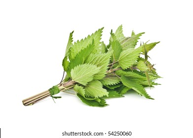nettle bunch isolated on white