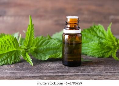 Nettle essential oil