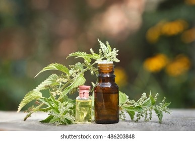 nettle essential oil container with nettle leaves and nettle seeds on wooden background