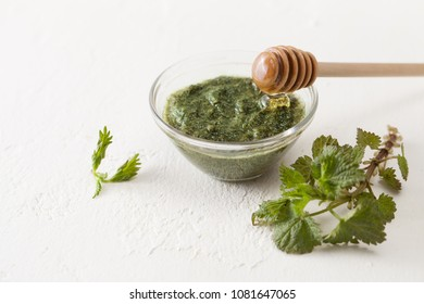 Nettle in the preparation of cosmetics and cooking. Treatment with stinging nettle at home. Copy space text.