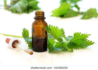 nettle tincture in a small bottle and fresh leaves on white wood, medicinal herb for overweight, diabetics and kidney weakness, selected focus, narrow depth of field
