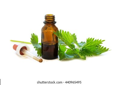 nettle tincture in a small bottle and fresh leaves isolated with shadows on a white background, medicinal herb for overweight, diabetes and kidney weakness, selected focus, narrow depth of field