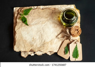 Nettle tincture/infusion ona an old paper stack. Fresh nettle leaf. Copy space in the middle. Perfect background for receipe. Urtica dioica