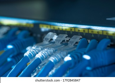 Network cable and Gigabit Switch port or LAN UTP cat6 cable in technology data center room. Close up and selective focus.