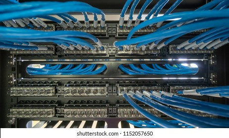 Network cable and patch panel in rack cabinet