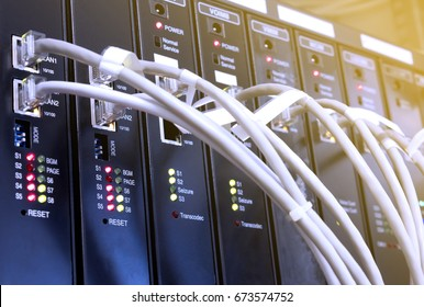 Network cable with servers in a technology voip system.