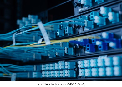 Network cables being switched to the data server