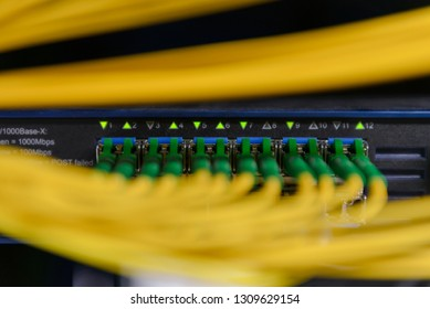 Network Switch and ethernet cables. Information Technology Computer Network