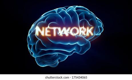 Network Xray Brain isolated on black background