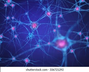 Neural network , Brain cells , Human nervous system , Neurons