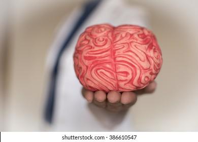 Neuromanagement, Hand holding a brain