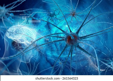 Neurons - Synapse in human neural system