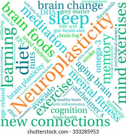 Neuroplasticity word cloud on a white background.