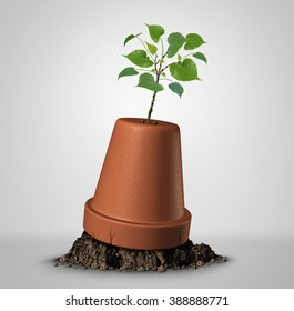 Never give up hope concept of persistence and the unstoppable force of nature as a sapling plant emerging out of an upside down flower pot as a success metaphor and motivation symbol.