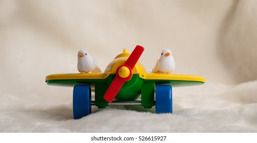 never give up! small white birds flying on the airplaine