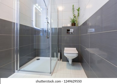 New bathroom interior with glass shower cabin