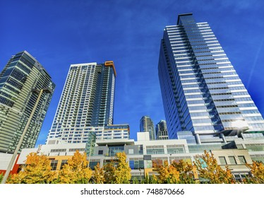 New Bellevue Washington Tall Buildings Yellow Autumn Leaves