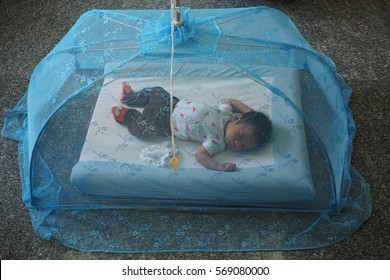 new born baby sleeping in mosquito net, eleven days old thai baby boy.