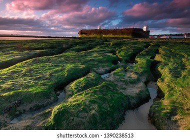 New Brighton, Wirral, Liverpool, Merseyside, England, Britain, August 2007, Naploeonic Fort Perch Rock with green seaweed covered rocks and colourful clouds at sunrise