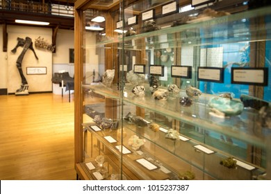 New Brunswick, NJ - January 24, 2018: Rutgers Geology Museum (view of minerals and fossils  display)