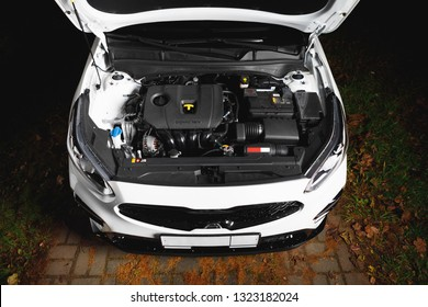 new car engine and parts under hood bonnet