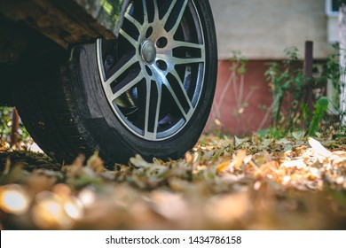 New car tire with silver rims sitting on cement road covered with dry leaves – Sport vehicle with slim rubber wheels and chrome hubcap on autumn background with dead plants