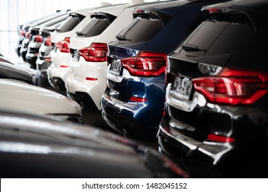 new cars in a row at the dealership