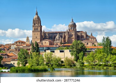 New Cathedral in Salamanca - view from river side, Castilla, Spain
