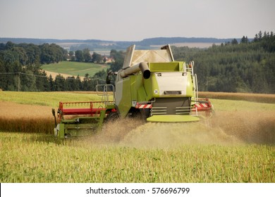 New combine in oilseed rape field, harvesting canola for bio fuel, grinding of straw, dust in air, conventional agriculture, rare perspective