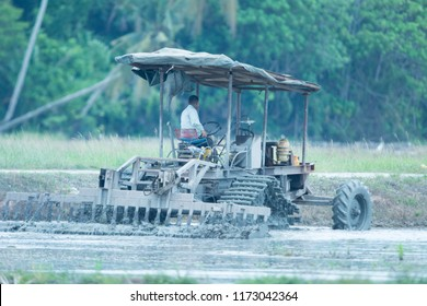 New Delhi, INDIA 25 Ogos 2018 : Unidentified farmer with tractor preparing land for sowing with cultivator, An Indian farming scene.