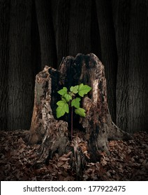 New development and renewal concept as a hollow old rotting tree stump with a growing green sapling emerging and replacing the past as metaphor for revival in business and in life.